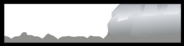 FlexTM logo